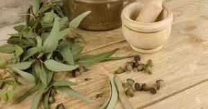 Evkaliptusovo olje izredno pripomore pri zdravljenju bronhitisa.