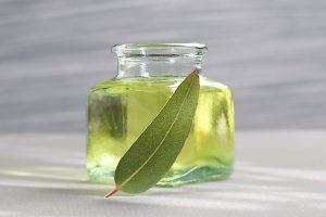 Evkaliptusovo olje je eno izmed najmočnejših naravnih olj v boju proti bakterijam.