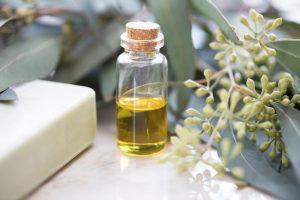 Evkaliptus uporabljamo tudi v kozmetični industriji.
